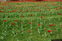 2017-04-06 Arundel Castle, Arundel, Sussex.  (162)171