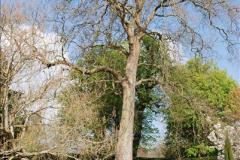 2017-04-06 Arundel Castle, Arundel, Sussex.  (29)029