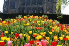 2017-04-06 Arundel Castle, Arundel, Sussex.  (75)075