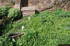 2017-04-06 Arundel Castle, Arundel, Sussex.  (94)094