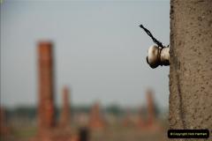 2009-09-13 Auschwitz & Birkenau, Poland.  (122)122
