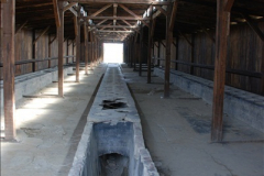 2009-09-13 Auschwitz & Birkenau, Poland.  (126)126