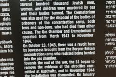 2009-09-13 Auschwitz & Birkenau, Poland.  (134)134