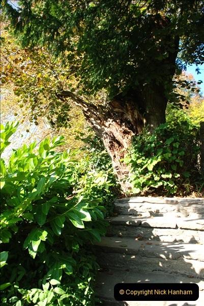 2018-10-21 Dyrham Park (NT) Autumn Colour. Near Bath, Somerset.  (32)032