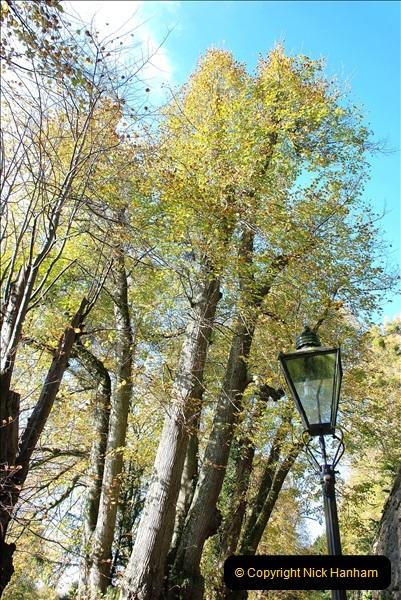 2018-10-21 Dyrham Park (NT) Autumn Colour. Near Bath, Somerset.  (42)042