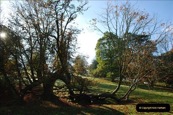 2018-10-21 Dyrham Park (NT) Autumn Colour. Near Bath, Somerset.  (6)006