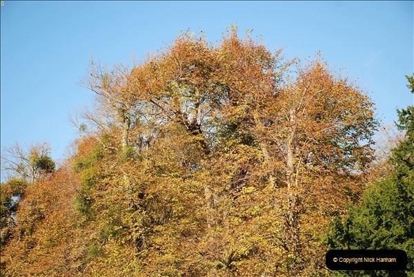 2018-10-21 Dyrham Park (NT) Autumn Colour. Near Bath, Somerset.  (29)029