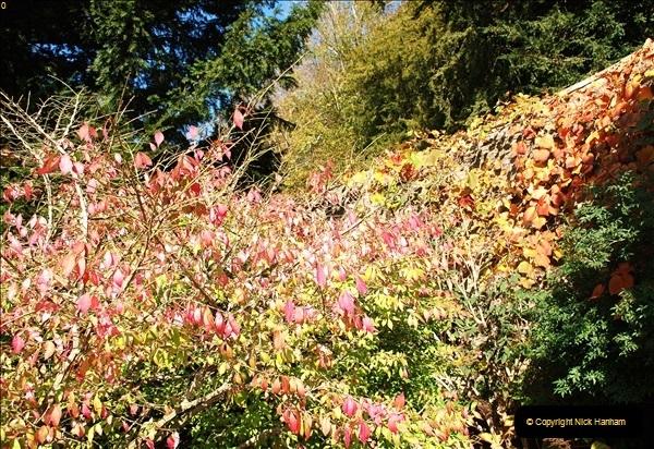 2018-10-21 Dyrham Park (NT) Autumn Colour. Near Bath, Somerset.  (30)030