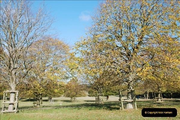2018-10-21 Dyrham Park (NT) Autumn Colour. Near Bath, Somerset.  (57)057