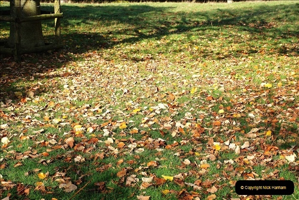 2018-10-21 Dyrham Park (NT) Autumn Colour. Near Bath, Somerset.  (60)060