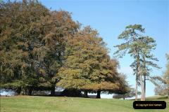2018-10-21 Dyrham Park (NT) Autumn Colour. Near Bath, Somerset.  (2)002