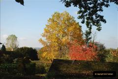2018-10-21 Dyrham Park (NT) Autumn Colour. Near Bath, Somerset.  (22)022