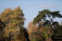 2018-10-21 Dyrham Park (NT) Autumn Colour. Near Bath, Somerset.  (28)028