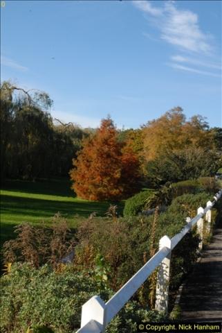 2013-11-10 Autumn in Poole, Dorset.  (105)105