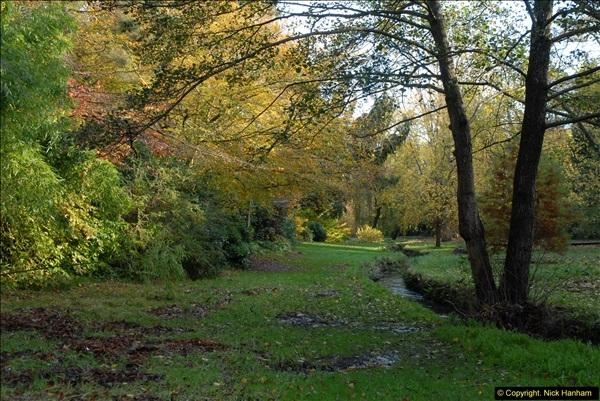 2013-11-10 Autumn in Poole, Dorset.  (37)037