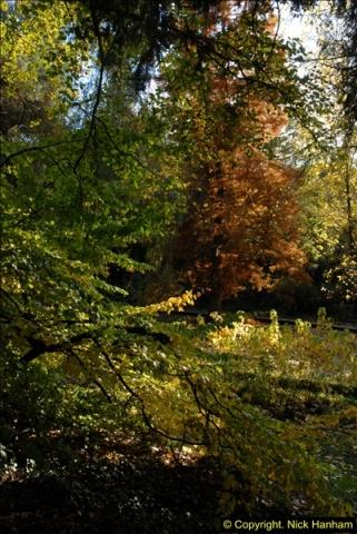 2013-11-10 Autumn in Poole, Dorset.  (46)046