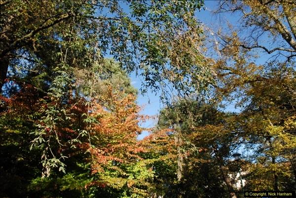 2013-11-10 Autumn in Poole, Dorset.  (57)057
