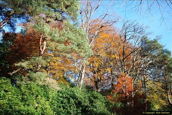 2013-11-30 Autumn in Poole, Dorset.  (10)144