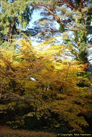 2013-11-30 Autumn in Poole, Dorset.  (27)161
