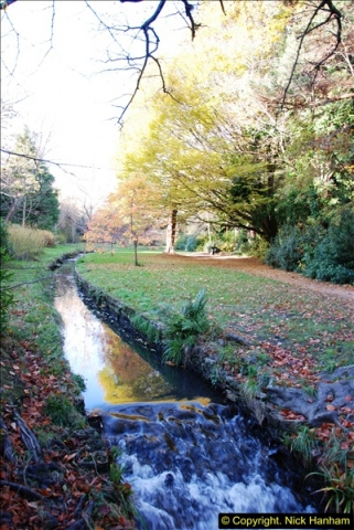 2013-11-30 Autumn in Poole, Dorset.  (28)162