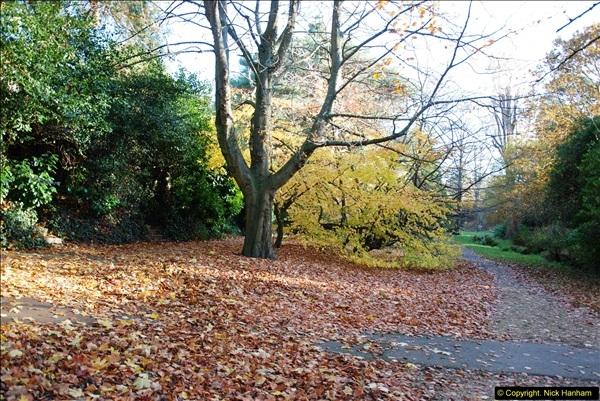 2013-11-30 Autumn in Poole, Dorset.  (7)141