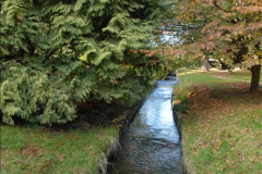 2013-11-10 Autumn in Poole, Dorset.  (100)100