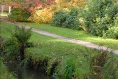 2013-11-10 Autumn in Poole, Dorset.  (76)076