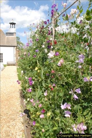 2015-07-31 Avebury, Wiltshire.  (49)49