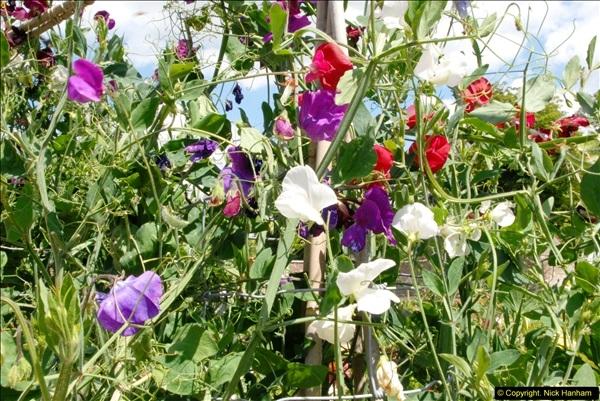 2015-07-31 Avebury, Wiltshire.  (53)53