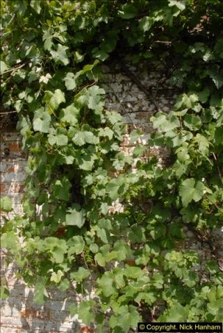 2015-07-31 Avebury, Wiltshire.  (62)62
