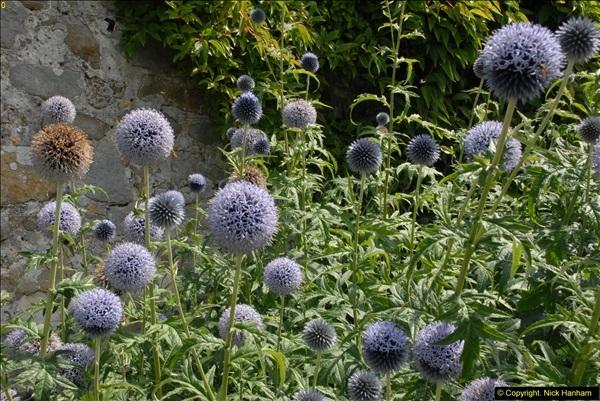 2015-07-31 Avebury, Wiltshire.  (67)67