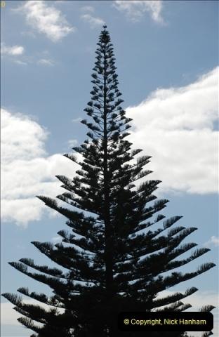 2012-09-23 to 25 Azores. Ponta Delgada.  (273)0293