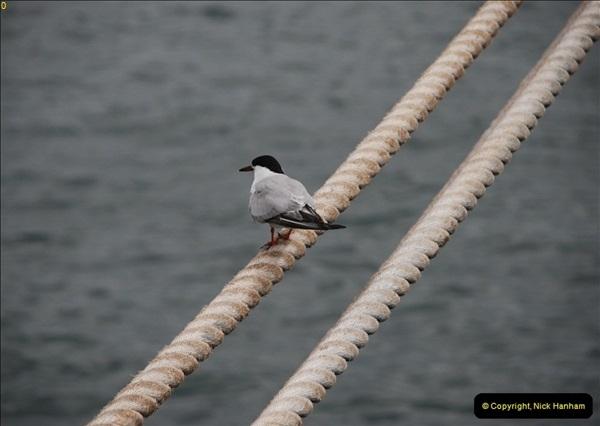 2012-09-23 to 25 Azores. Ponta Delgada.  (40)0060