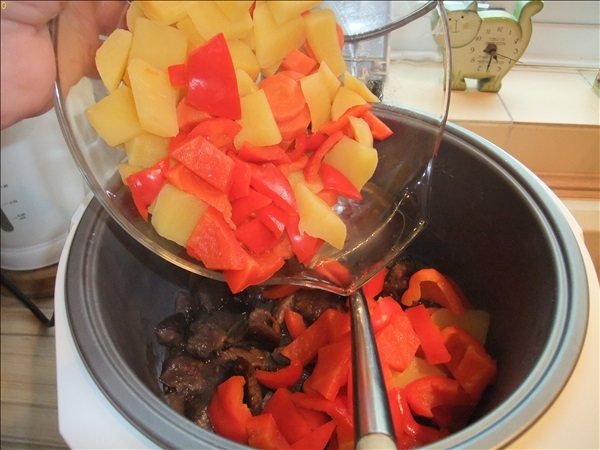 2016-02-27 Making a Beef Stew in a slow cooker.  (48)048