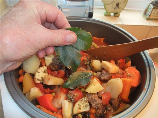 2016-02-27 Making a Beef Stew in a slow cooker.  (54)054