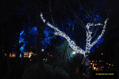 2018-11-30 Bournemouth Christmas Lights.  (45)045