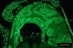 2018-11-30 Bournemouth Christmas Lights.  (72)072