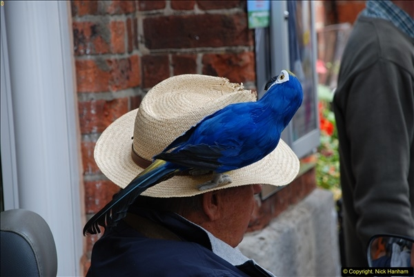 2015-09-05 Bridport Hat Festival 2015.  (586)586