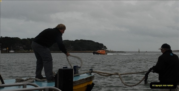 2012-10-18 Visit to Brownsea Island, Poole Harbour, Dorset.  (103)103
