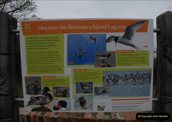 2012-10-18 Visit to Brownsea Island, Poole Harbour, Dorset.  (69)069