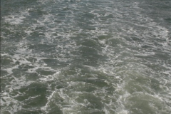 2012-10-18 Visit to Brownsea Island, Poole Harbour, Dorset.  (39)039