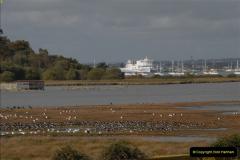 2012-10-18 Visit to Brownsea Island, Poole Harbour, Dorset.  (48)048