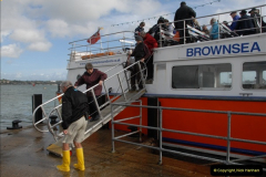 2012-10-18 Visit to Brownsea Island, Poole Harbour, Dorset.  (52)052