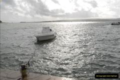 2012-10-18 Visit to Brownsea Island, Poole Harbour, Dorset.  (54)054