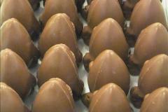 2015-05-20 Cadbury World.  (71)071