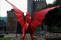 2019-01-04 Cardiff Castle.  (50)50