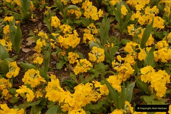 2013-04-27 Compton Acres Gardens, Poole, Dorset.  (18)018