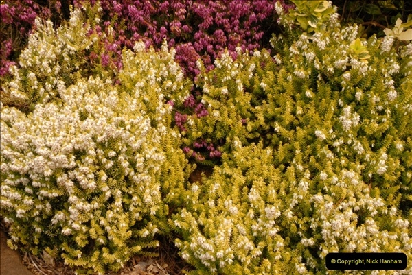 2013-04-27 Compton Acres Gardens, Poole, Dorset.  (86)086