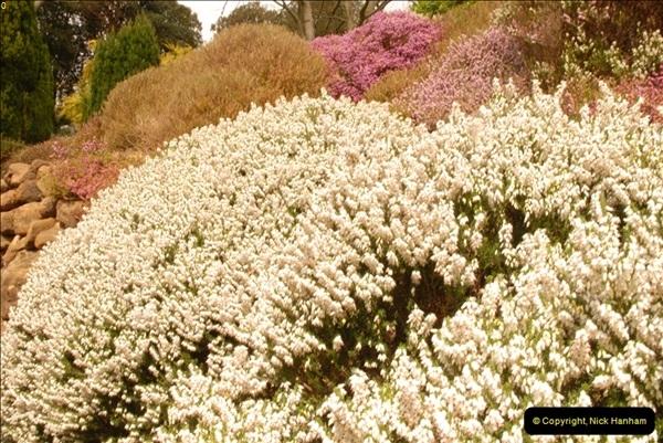 2013-04-27 Compton Acres Gardens, Poole, Dorset.  (88)088