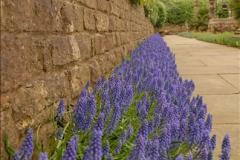 2013-04-27 Compton Acres Gardens, Poole, Dorset.  (17)017